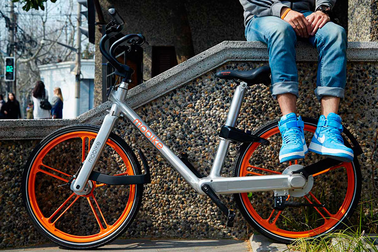Велосипеды бизнес идеи бизнес план устричная ферма