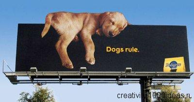 Реклама товара и услуг подать рекламу и без регистрации