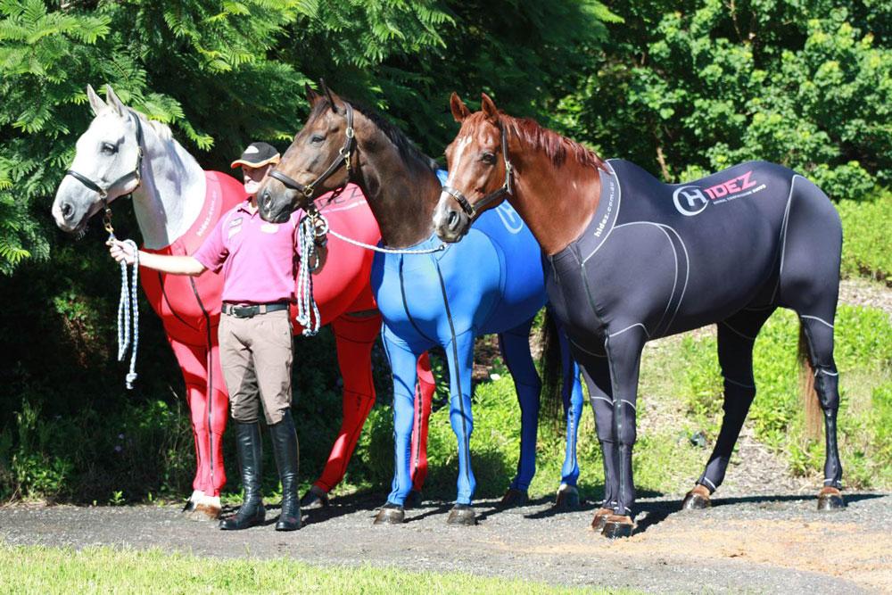 Компрессионное белье для лошадей