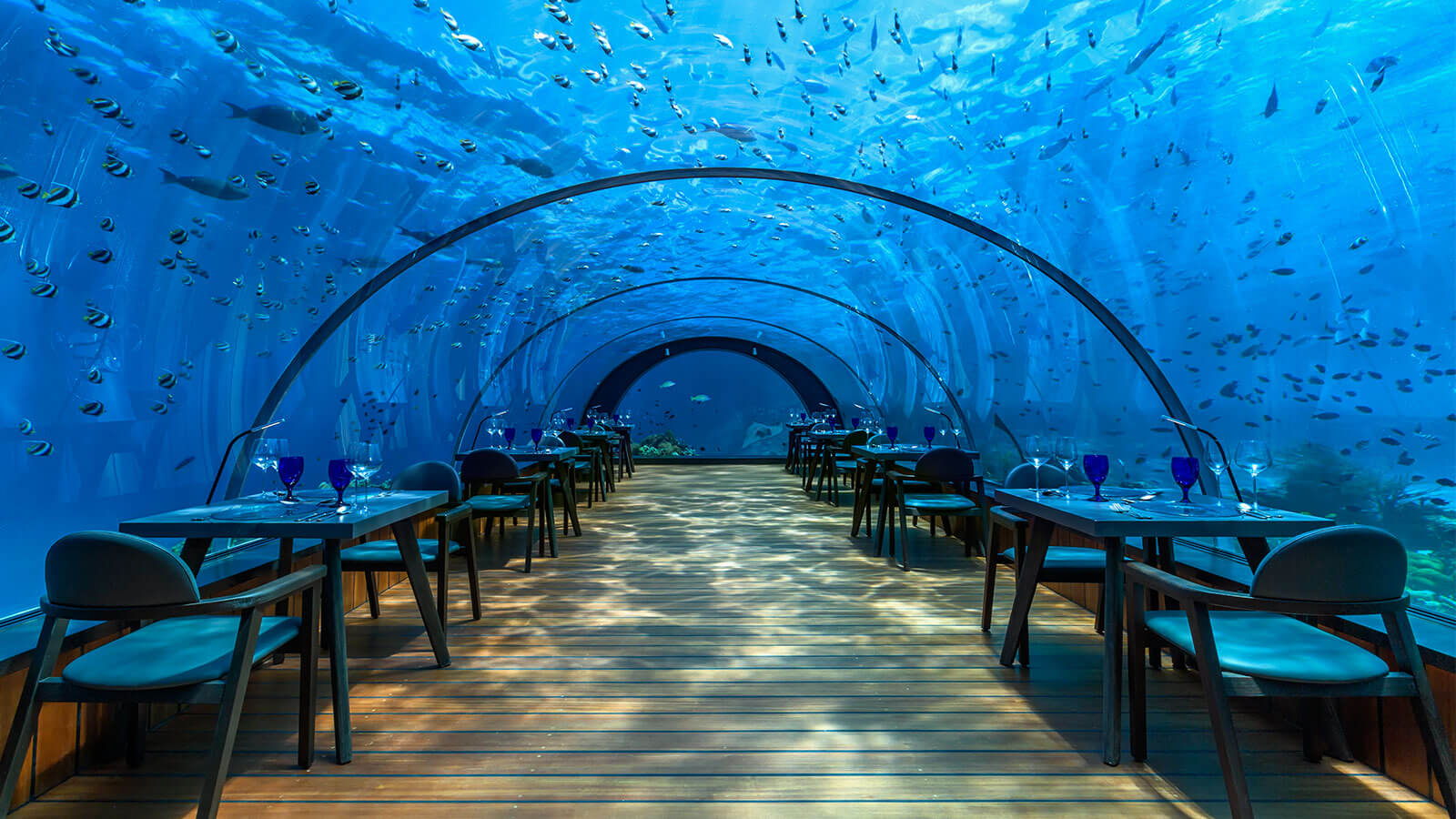 underwater restaurant Though under isn't officially open yet (it'll be around officially in the spring of 2019), the restaurant will be able to sit 100 people about halfway, well, under the norwegian sea when it's running.
