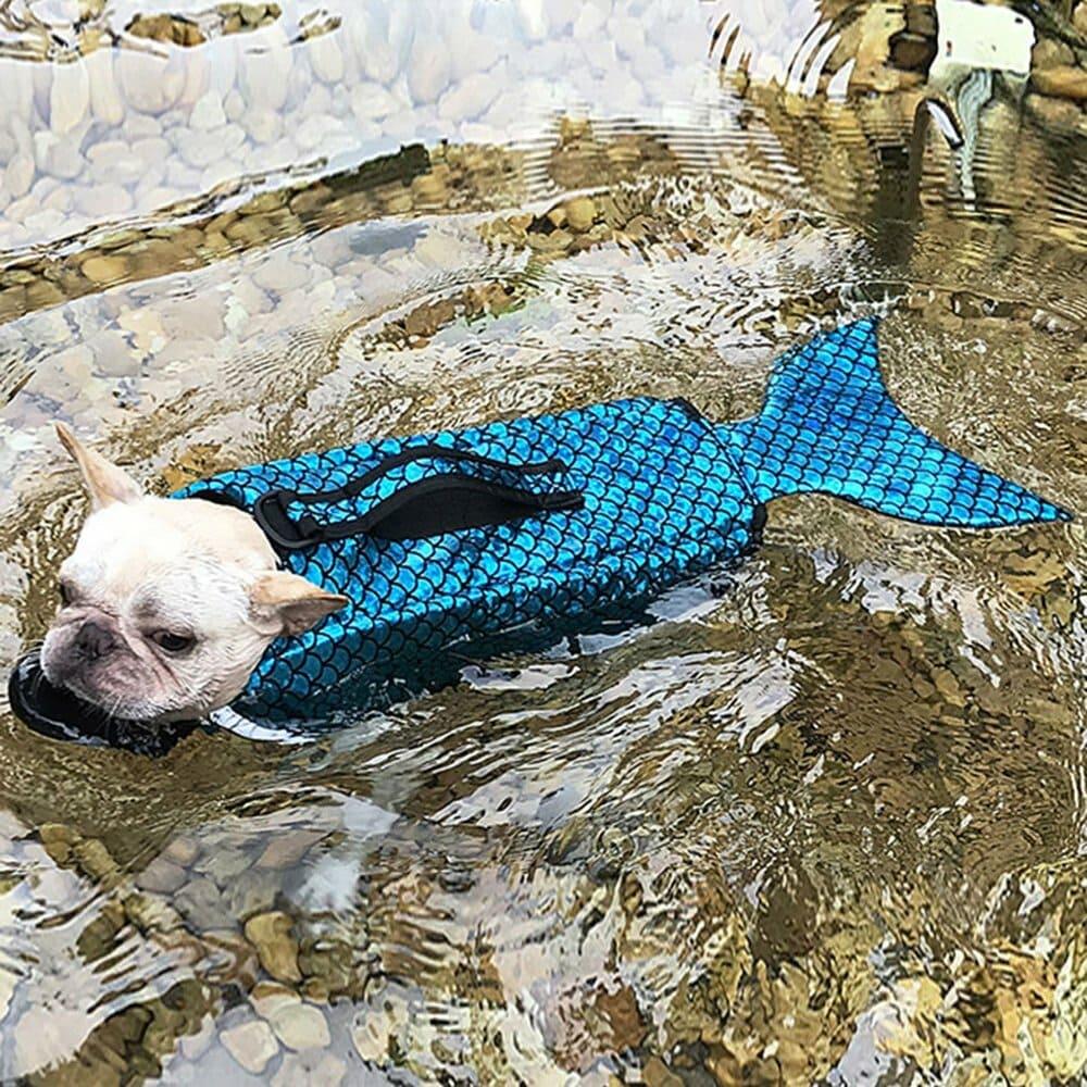 """Тренд """"Плавучий бизнес"""": 4 необычных товара для развлечений в воде"""