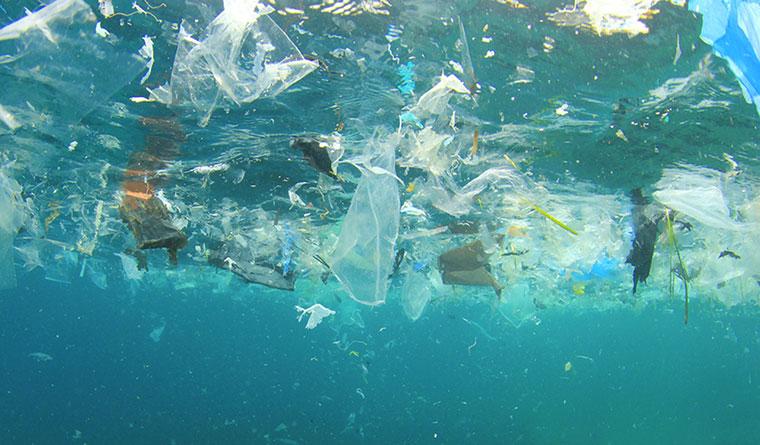 Бизнес-идея №5997. Переработка океанической пластмассы в посуду