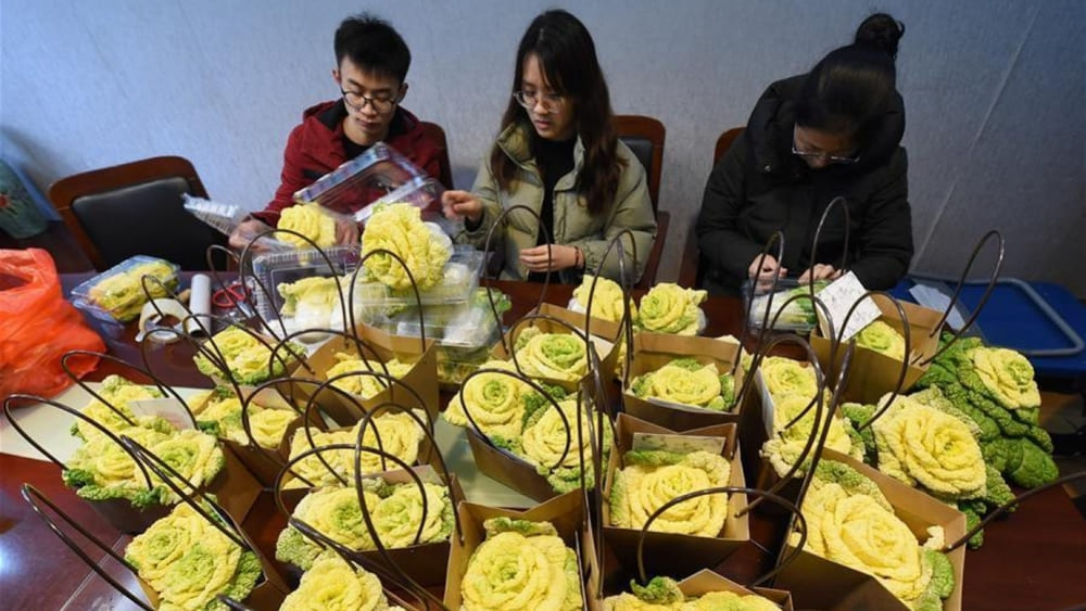 Бизнес из Поднебесной-2019. 20 новых бизнес-идей из Китая
