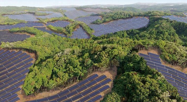 Бизнес идея №5483. Заброшенные поля для гольфа становятся солнечными фермами