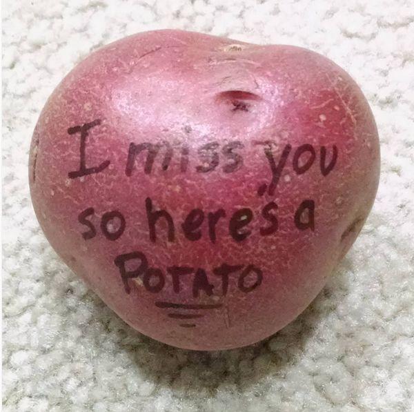 Картофельная почтовая служба