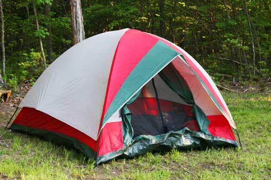 Single Spot Camping - шведский стартап, связывает тех, кто владеет небольшим участком земли с теми, кто хочет на этом участке разбить свои палатки.
