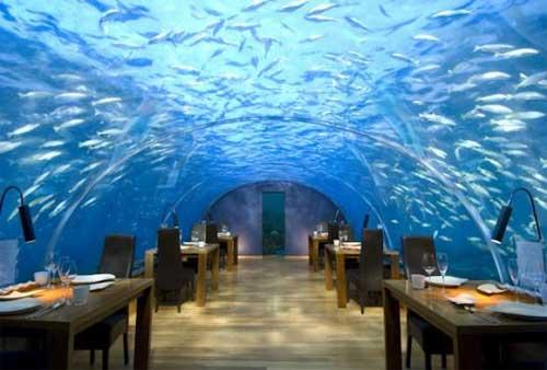 Интересная идея бизнеса: подводные рестораны