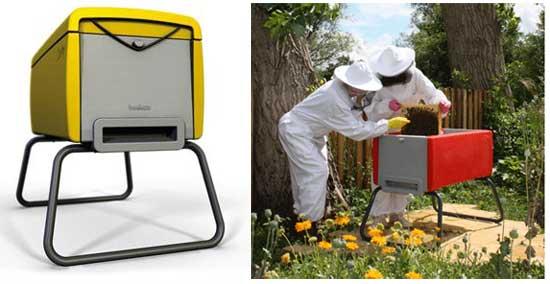 пчелиная идея: Пчеловодство как хобби для горожан