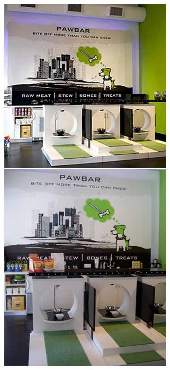 идея бизнеса для домашних животных: Суши-бар для домашних животных
