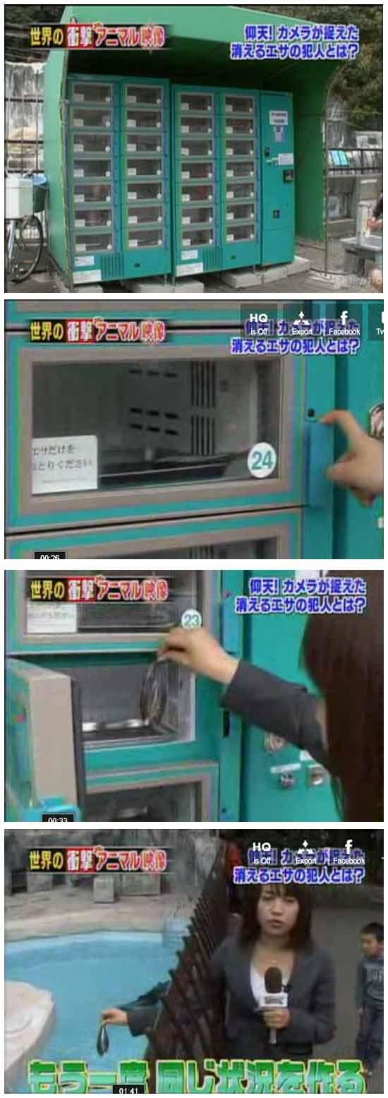 Автомат по продаже рыбы