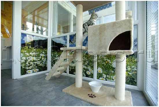 Роскошный отель для котов