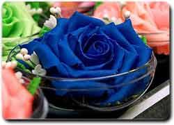 Идея № 2067. Цветы из мыла