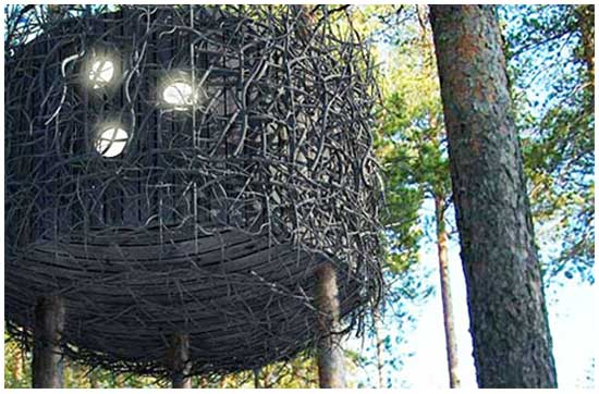 Идея № 2077. Отель-гнездо на дереве