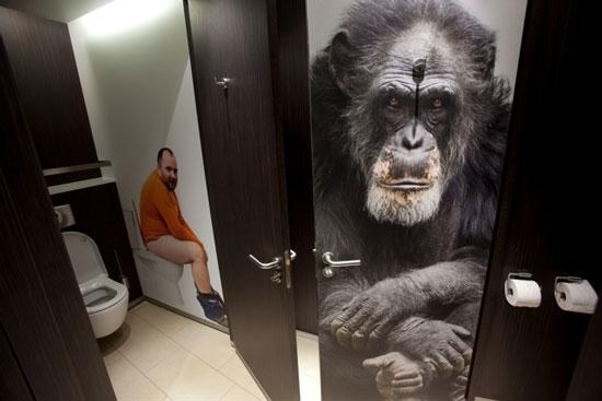 Общественные туалеты от компании 2theloo не только чистые, но и комфортабельные, оборудованные необходимыми гигиеническим средствами и даже кофейными машинами и магазинами.