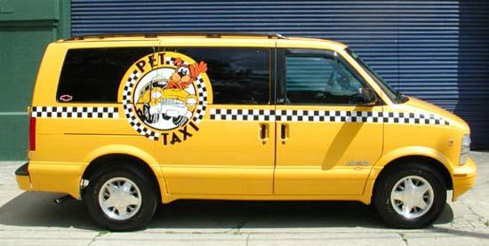 Служба такси для домашних животных - для России пока необычный бизнес.