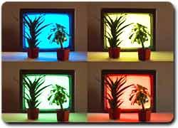 Бизнес идея № 2445. Фотосинтетический ресторан для растений