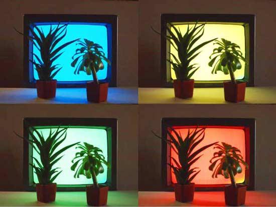 В Сакраменто, штат Калифорния, был открыт необычный ресторан  Photosynthetic Restaurant (Фотосинтетический ресторан) для растений.
