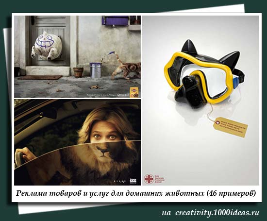 Реклама товаров и услуг для домашних животных (46 примеров)