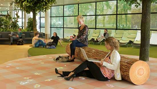 В международном, очень крупном аэропорту Schiphol был открыт первый в мире парк отдыха.