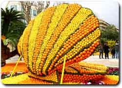 Фестиваль лимонов в Ментоне (46 фото)