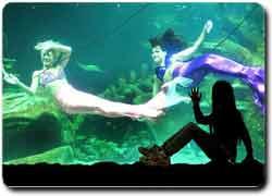 Бизнес идея № 2136. Развлекательный парк с русалками