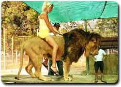 Самый экстремальный зоопарк в мире