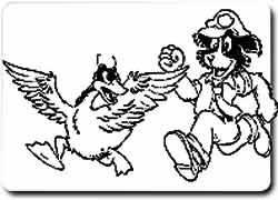 Абсурдный бизнес на охране лужаек от гусей