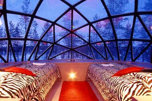 Так как это место находится за полярным кругом, то постояльцы с сентября по апрель могут наблюдать северное сияние через стеклянную крышу своего номера в Деревне Иглу.