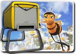 Бизнес идея № 1320. Пчеловодство как хобби для горожан