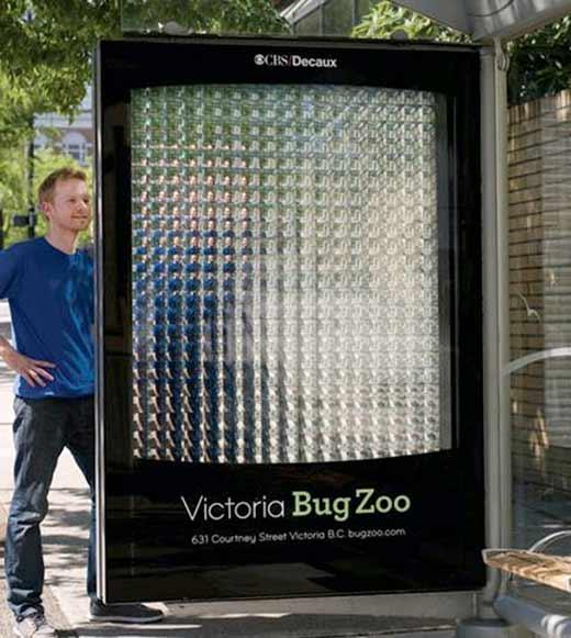 Креативная реклама мини-зоопарка насекомых