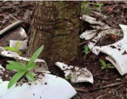 биодеградирующие материалы