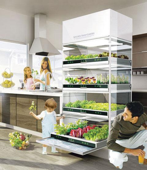 выращивание еды в условиях города