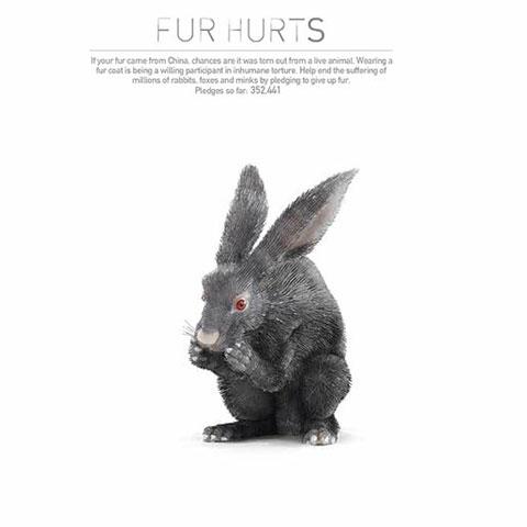 реклама общества защиты животных