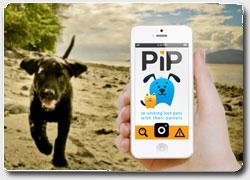 Мобильное приложение  PiP
