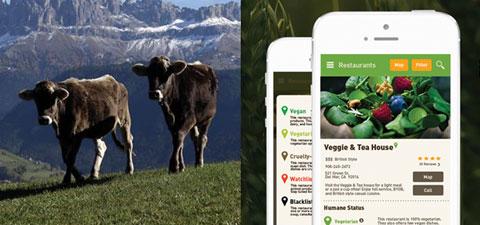 мобильное приложение для выбора ресторана с гуманным мясным меню