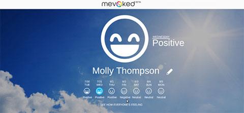 социальный мониторинг Mevoked
