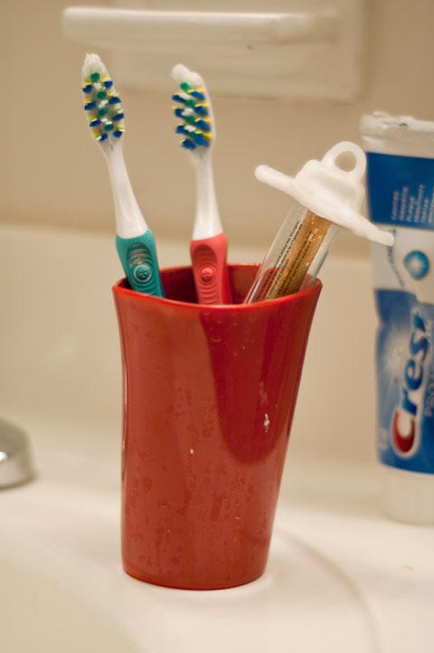 Бизнес-идея №4713. Палочка мисвак —органическая зубная щётка