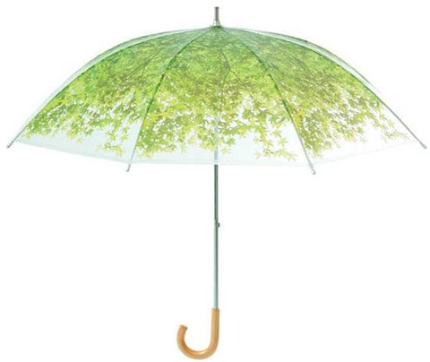 зонтик-солнечный свет