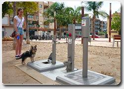 Бизнес идея №4968. Общественный городской туалет для собак